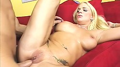 Bootilicious blonde babe likes anal toys and cocks in her dark ass cave