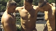 Hunky Mihaly gets his rigid cock sucked by two guys outdoors